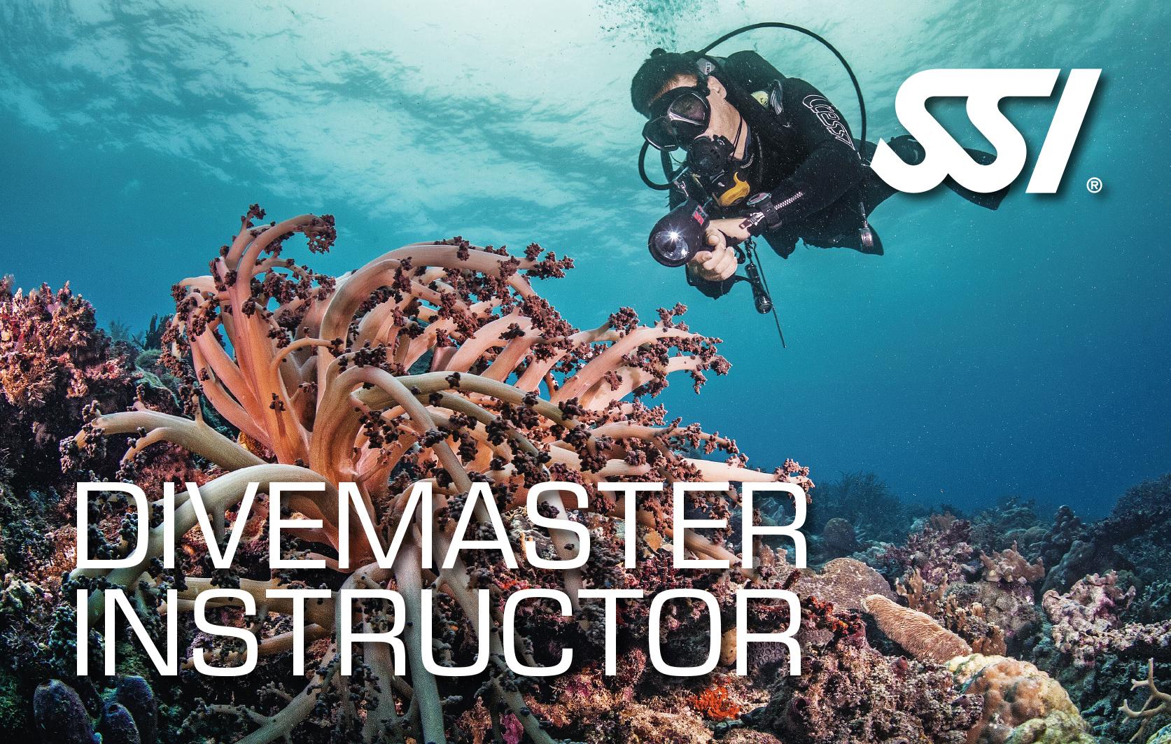 Инструктор Divemaster